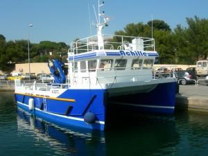fishcat AV